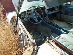 1963 or 1964 Buick Riviera Interior (coconv) Tags: pictures auto door old 2 two classic cars abandoned hardtop car yard vintage dead photo buick junk automobile riviera image photos antique interior or board air picture images 63 64 vehicles photographs dash photograph vehicle junkyard dashboard autos collectible recycle collectors salvage coupe wrecked automobiles 1964 1963 conditioning riveria blart