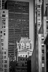 New-York. (Jrme Cousin) Tags: new york city usa white newyork black building tower brooklyn america nikon noir tour bronx manhattan united states nikkor et blanc unis immeuble 18105 etats damerique 55300 d5000