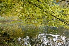 Arlesheim 18.10.12 (ritsch48) Tags: switzerland ermitage arlesheim weiher basellandschaft