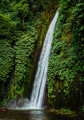 Jungle waterfall (Fredde Nilsson) Tags: bali mountain water trek indonesia waterfall sony nex munduk