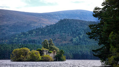 The Castle (lincoln_eye) Tags: uk autumn trees lake mountains castle water pine clouds forest island scotland countryside unitedkingdom sunny bluesky september highland aviemore autumnal lochaneilein badenochandstrathspey rothiemurchusestate