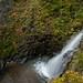 白神山地 暗門滝