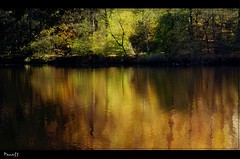 One of seasons (pana53) Tags: autumn colors landscape wasser seasons herbst wald bume nordheide herbstfarben malerisch blinkagain pana53