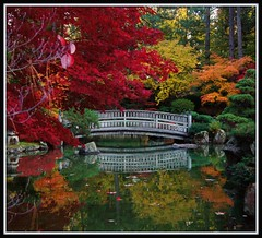 Manito Japanese Garden (Carplips) Tags: park bridge autumn pond spokane manito