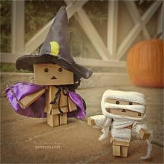 Happy All Hallows' Eve ~ Oche Shamhna!! (.OhSoBoHo) Tags: halloween pumpkin trickortreat magic manga spooky kawaii danbo imissit allhallowseve october31st revoltech danboard  danbolove ochesamhain nikoncoolpixs6000 danbophotography amazoncardboardrobot halloween2012 danbomummy danbohalloween littlebigdanbo weedanbo danbowizard iprocessedthehelloutofthisasitsjustnotthesamewithoutourdslrsigh forthoseofyouwonderingthecanonisnotworkingrightwearegettingaweirderrormessagethatcantbefixedunlesswebringitotacanonplace butleastihaveacameratouseatall littlebigdanboscostumeigotoffatoyipickedupinathriftstorefor60c andweedanboscostumeisbandage
