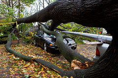 Smashed cars in the wake of Sandy (Nick Mulcock) Tags: