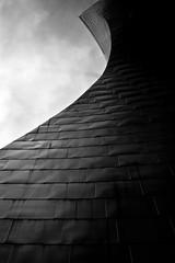 Titani (delatoalla) Tags: museum canon eos museu bilbao museo titanium bilbo titanio gughenheim 550d titani delatoalla
