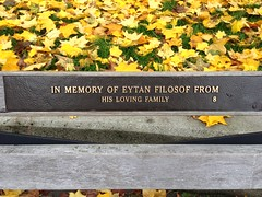 IMG_3375 (Sherwood411) Tags: park sunset west english beach vancouver bench bay seawall stanley end eytan plaques filosof sherwood411