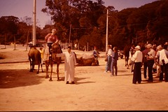 TANGER March 1984 pic13 (streamer020nl) Tags: tourists camel morocco louise maroc 1984 marocco tanger 23march1984 230384