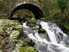 Cloghleagh Bridge & Fall (fotobyanna) Tags: trees nature water stone forest canon waterfall moss rocks boulders flowing gcc senic cowicklow greatoutdoors irishlandscape 2013 cloghleaghbridge