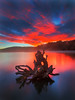 Red Dawn (Dylan Toh) Tags: newzealand landscape photography dee keplertrack lakemanapouri shallowbay everlook moturau ☆thepowerofnow☆ teanaureel