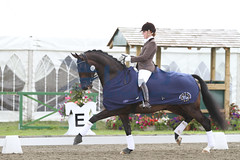 IMG_0781 (RPG PHOTOGRAPHY) Tags: final awards hickstead 5y 200712