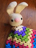 Easter Bunny Blankie (ham_and_eggs) Tags: boy baby rabbit bunny girl square toy toddler infant pattern handmade crochet yarn gift granny amigurumi