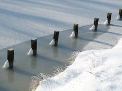 Foto in het Nollebos Vlissingen (Omroep Zeeland) Tags: de beelden het van genieten nollebos winterse