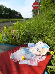 Monopoly in a ditch (stevenbrandist) Tags: red game green grass ditch leicestershire monopoly rubbish noentry roadside boardgame a6 frustrating dumped rothley monopolymoney waddingtons