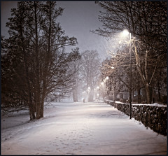 A walk in the snowstorm by the cemetery (Appe Plan) Tags: road street winter light snow storm cold tree cemetery night dark 50mm sweden walk karlstad prints nikkor 50 stroll vrmland fotsteps d700