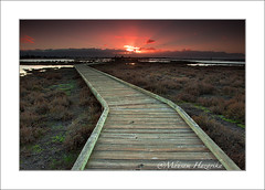 Follow the path of light (hazarika) Tags: california sunset sanjose donedwardswildliferefuge canon1635mmf28liiusm singhray3stopreversegnd lee09softstepgnd