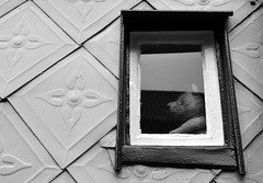 Das Fenster zum Hof / The Bear Window (Andreas Meese) Tags: goslar harz stadt city innenstadt altstadt old town citty center weltkulturerbe architektur architecture nikon d5100 regen rain rainy day das fenster zum hof the bear window br