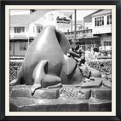 le beau et la bête... (mariej55quebec) Tags: corée korea seoul jeju jeonju summer travel voyage world tourisme tourism usa étatsunis