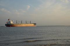 Santa Katarina DST_7071 (larry_antwerp) Tags: santakatarina bulk 9425930 oetker rudolfaoetker schip ship vessel        schelde
