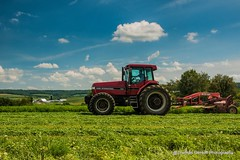 Cutting Hay (Thomas DeHoff) Tags: case ih 7140 discbine hay mowing green red tractor illinois sony a700