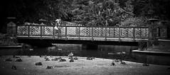 Matt_Langton0571 (matt_langton70) Tags: nikond90 lightroom nikefex silverefex buxtonderbyshire bridge blackandwhite monochrome mono couple walking river park