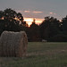 Round straw bale at sunset