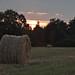 Round straw bale at sunset