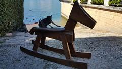 20160810_101922 (iserentha) Tags: ortasangiulio lake italia italy piemonte