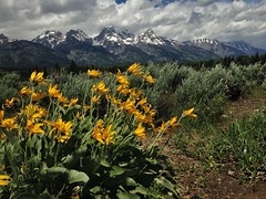 Clearing Thunderstorm in the Tetons (PaulBP) Tags: tetons grandteton nationalparks jacksonhole blacktailpondsoverlook