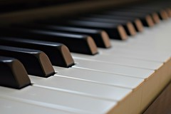 The world is black, the world is white ... (Maria Godfrida) Tags: blackandwhite instrument musicalinstrument musicinstrument piano keys pianokeys closeup 7dwf