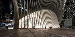 Calatrava Transportation Hub (DSC08624) (Michael.Lee.Pics.NYC) Tags: newyork wtc worldtradecenter calatrava oculus transportationhub architecture night lowermanhattan fisheye sony a7rm2 rokinon12mmf28