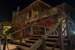 Overgrown (Fret Spider) Tags: venice venezia wander wideangle canonef24mmf14liiusm night growth plant italy vacation architecture house color