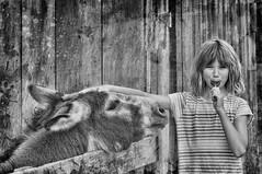 Candy Please (jauza1) Tags: bw kid kids child children enfant girl fille littlegirl younggirl