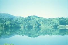 (.) Tags: japan nature spring lake green film pentaxsp rp400h