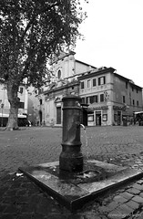 """Trastevere, Rome • <a style=""""font-size:0.8em;"""" href=""""http://www.flickr.com/photos/89679026@N00/8085176109/"""" target=""""_blank"""">View on Flickr</a>"""