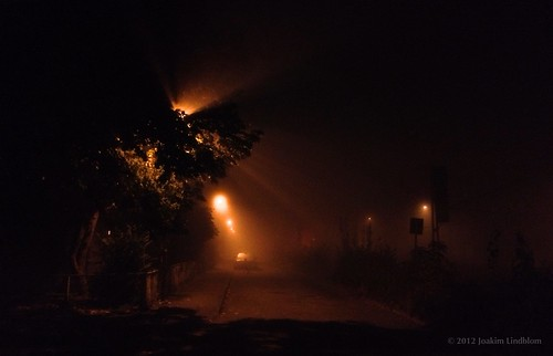 Morning fog, street light