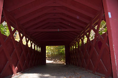 Entering Chatfield Hollow's covered bridge (Bob Gundersen) Tags: statepark road park street old bridge red usa lake building water barn river photo vanishingpoint interesting nikon flickr waterfront image shots hiking connecticut interior country shoreline picture newengland ct tunnel places indoor coveredbridge historical inside scenes gundersen conn killingworth nikoncamera chatfieldhollow cockaponset d5000 cockaponsetstateforest connecticutscenes nikond5000 cockaponsetstatepark bobgundersen robertgundersen