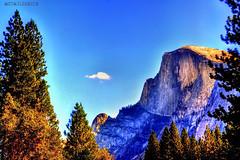 Half Dome (Tryppyhead) Tags: california usa yosemite yosemitenationalpark hdr nikond5000