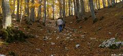 La camminata digestiva. (Abulafia82) Tags: autumn panorama color landscape colore pentax mano 1855 autunno colori paesaggi paesaggio 2012 lazio k5 abruzzo autofocus libera ciociaria sagradellacastagna valcomino forcadacero da1855wr 1855wr pentaxk5 pentaxda1855alwr da1855alwr tappoermetico ottobre2012