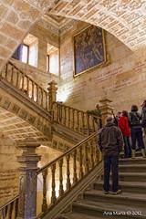 Escalera de Honor o Noble (Gonzalo y Ana Mara) Tags: ana y salamanca mara canonef1740mmf4lusm canoneos7d escaleradehonor maragonzalo escaleranoble iglesiadelespritusantooclereca