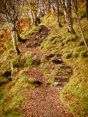 ben a'an (piglicker) Tags: uk autumn scotland trossachs strathyre benaan binnein olympuse3