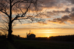 sunrise over silos (aimeeern) Tags: silhouette rural sunrise canon rebel dawn michigan farm silos backroads granary berriencounty xti canonef40mmf28stm