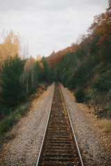 the amtrak adirondack to montral (courtody) Tags: autumn usa fall train october traintracks perspective adirondacks journey newyorkstate 365 oneyear adirondack 2012 366 3651 365project 3651project 366project 5dmarkiii courtneytight