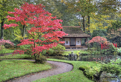 """Japanese Autumn • <a style=""""font-size:0.8em;"""" href=""""http://www.flickr.com/photos/45090765@N05/8139019172/"""" target=""""_blank"""">View on Flickr</a>"""