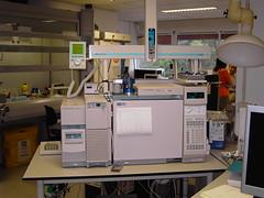 Analytical Skills Development training 2005