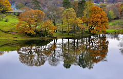 DSC_0439 Autumn at Loughrigg Tarn (wilkie,j ( says NO to badger cull :() Tags: autumn trees nature water reflections landscape nationalpark nikon scenery lakes lakedistrict scenic autumncolours nationalparks nationaltrust tarn loughrigg scenicwater