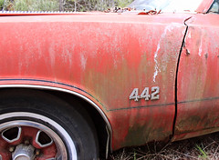 Relics & Refugees (BennyPix) Tags: auto old red copyright classic car vintage emblem 1971 junk rust automobile december ar antique  retro arkansas junkyard barkada allrightsreserved musclecar olds oldsmobile 2012 442 cutlass drewcounty wilmar unauthorizedusestrictlyprohibited allcommercialuseprohibited