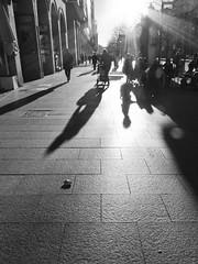 atardecer en independencia (antoine pirulier) Tags: atardecer navidad sombras independencia paseoindependencia