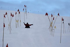 """Laura sleds past some flags • <a style=""""font-size:0.8em;"""" href=""""http://www.flickr.com/photos/27717602@N03/8362901905/"""" target=""""_blank"""">View on Flickr</a>"""